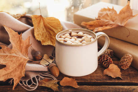 Cup of hot drink with marshmallows, books and autumn leaves near window on rainy day. Cozy atmosphere