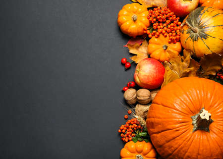 Flat lay composition with ripe pumpkins and autumn leaves on black background, space for text. Happy thanksgiving day 免版税图像