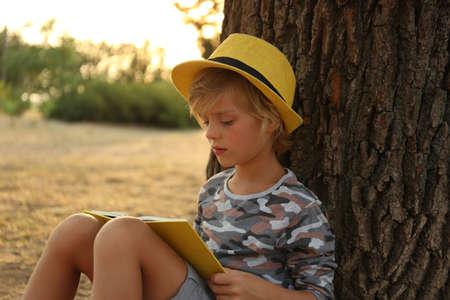 Cute little boy reading book near tree in park