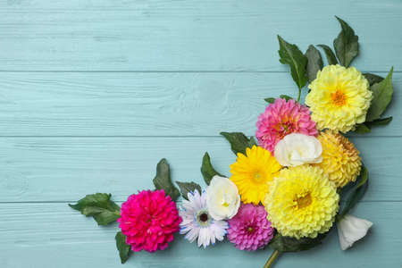 Flat lay composition with beautiful dahlia flowers on blue wooden background. Space for text