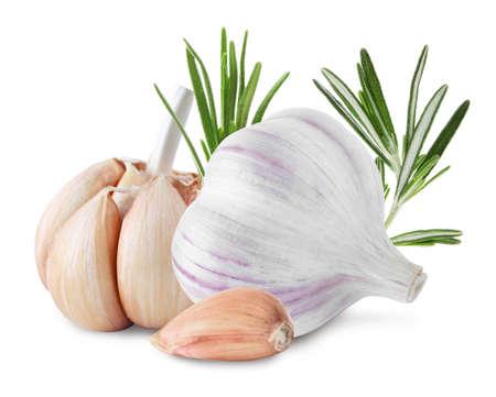 Fresh garlic with rosemary on white background