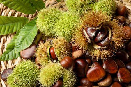 Fresh sweet edible chestnuts on wicker mat