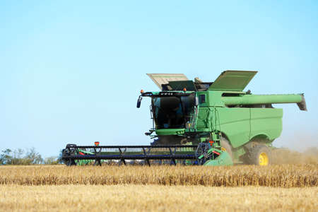 Modern combine harvester working in agricultural field Standard-Bild