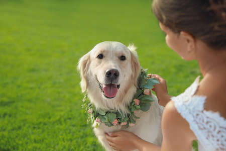 Bride and adorable Golden Retriever wearing wreath made of beautiful flowers on green grass outdoors, closeup Stock Photo
