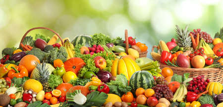 Assortment of fresh organic vegetables and fruits on blurred green background. Banner design