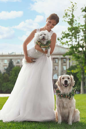 Bride and adorable dogs wearing wreathes made of beautiful flowers outdoors Stock Photo