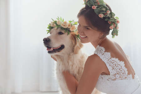 Bride and adorable Golden Retriever wearing wreath made of beautiful flowers indoors