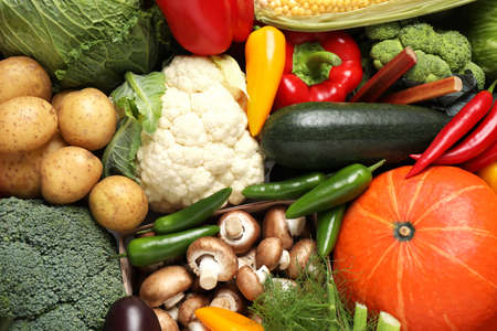 Different fresh vegetables as background, closeup view