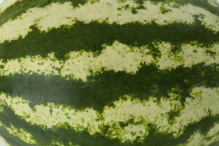 Delicious ripe whole watermelon as background, closeup Stock fotó