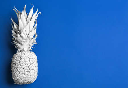 White pineapple on blue background, top view with space for text. Creative concept