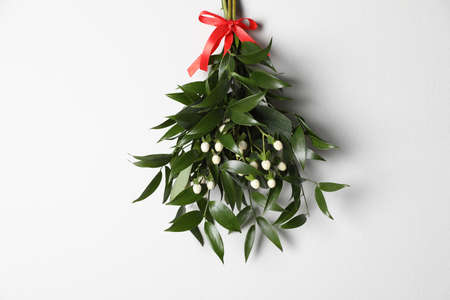 Mistletoe bunch with red bow hanging on white wall. Traditional christmas decor