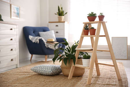 Stylish living room interior with wooden ladder and houseplants Standard-Bild