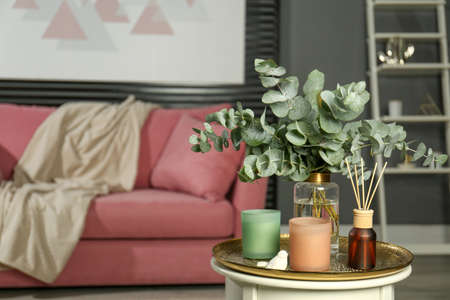 Eucalyptus branches, aromatic reed air fresher and candles on table in living room, space for text. Interior element
