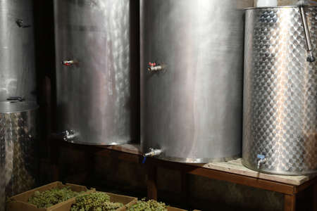 Steel tanks for wine fermentation and fresh grapes at factory