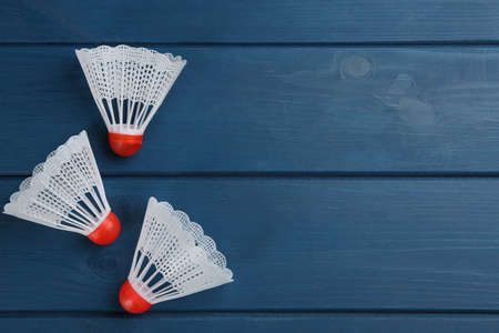 Shuttlecocks on blue wooden table, flat lay with space for text. Badminton equipment