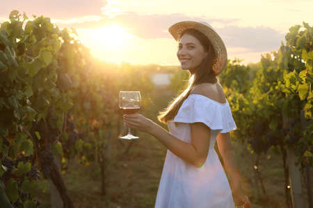 Beautiful young woman with glass of wine in vineyard on sunny day Standard-Bild