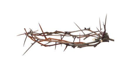 Crown of thorns isolated on white. Easter attribute