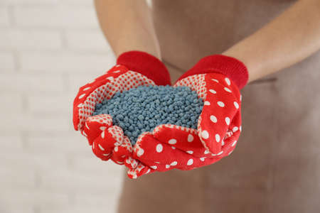 Woman holding pile of granular mineral fertilizer on blurred background, closeup