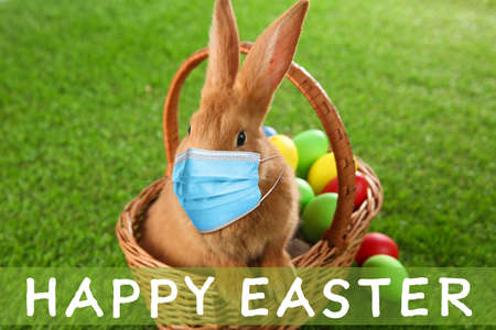 Text Happy Easter and cute bunny in protective mask on green grass. Holiday during Covid-19 pandemic
