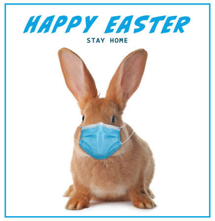 Text Happy Easter Stay Home and cute bunny in protective mask on white background. Holiday during Covid-19 pandemic