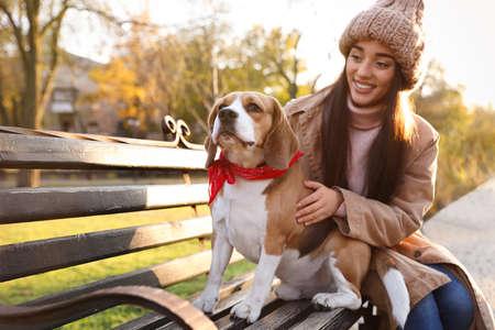 Woman walking her cute Beagle dog in autumn park 版權商用圖片