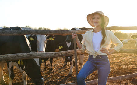 Young woman with shovel standing near cow pen on farm. Animal husbandry