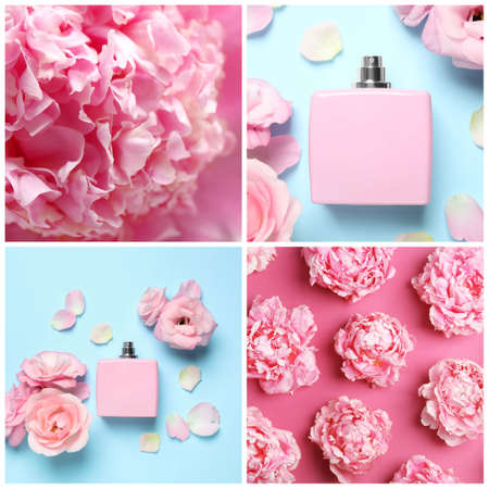 Creative collage with photos of luxury perfume and beautiful flowers on color backgrounds