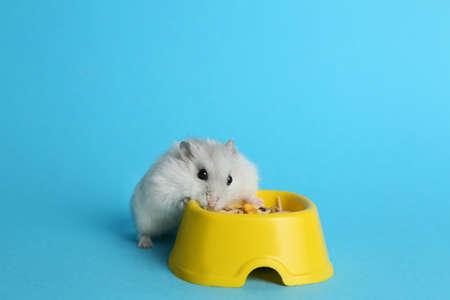 Cute funny pearl hamster near feeding bowl on light blue background