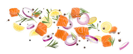 Pieces of delicious fresh raw salmon and different spices on white background. Banner design 免版税图像