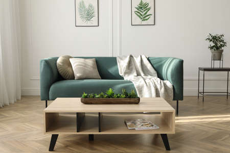 Soft green sofa and wooden table in living room. Interior design