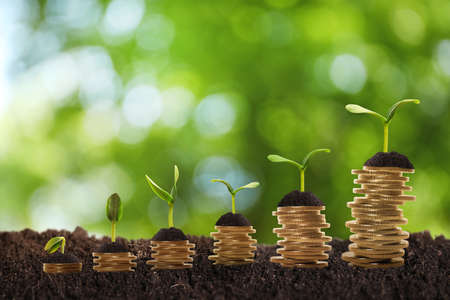 Stacked coins and green seedlings on ground outdoors, bokeh effect. Investment concept Stock fotó
