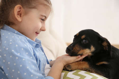 Little girl with cute puppy sitting on sofa indoors Imagens