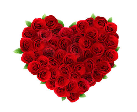 Heart made of beautiful red roses on white background