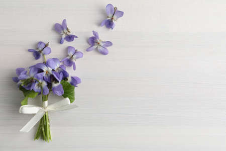 Beautiful wild violets and space for text on white wooden table, flat lay. Spring flowers Banque d'images