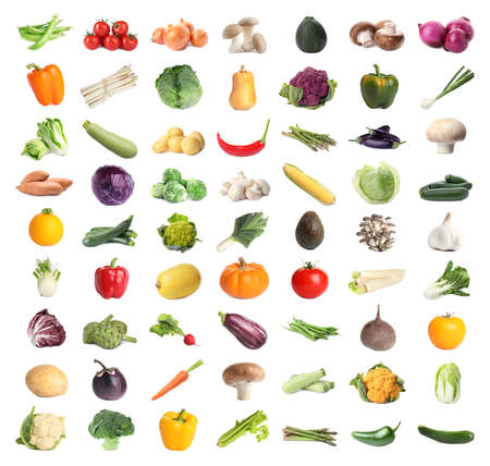 Collection of different fresh vegetables on white background