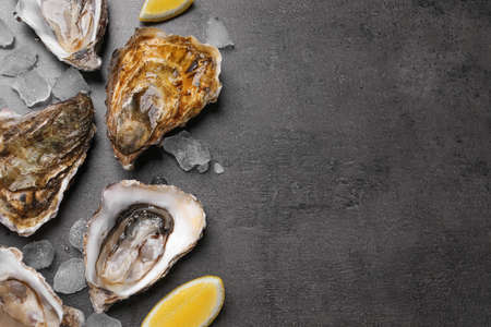 Fresh oysters with lemon and ice on grey table, flat lay. Space for text