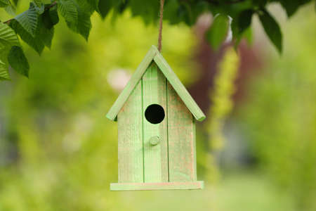 Green bird house hanging on tree outdoors