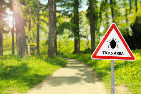 Warning sign Beware of ticks in forest on sunny day