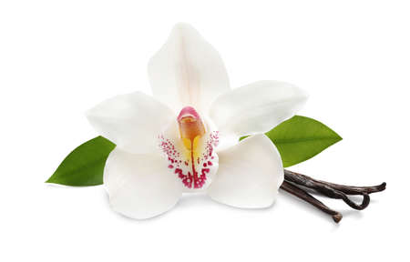 Aromatic vanilla sticks, beautiful orchid flower and green leaves on white background Banque d'images