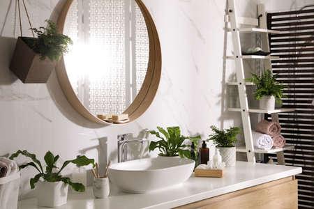 Beautiful green ferns and toiletries in bathroom 版權商用圖片