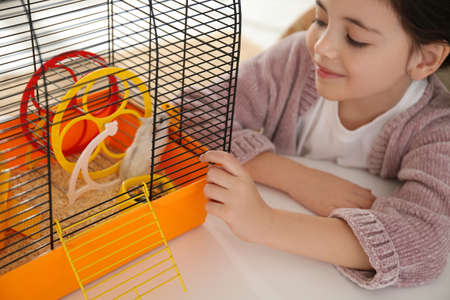 Little girl and her hamster in cage at home Stockfoto