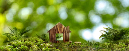 Eco friendly home. House model and coins on green grass outdoors, banner design Stockfoto