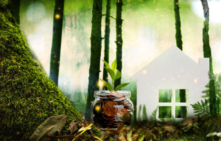 Eco friendly home. House model and jar with coins in forest