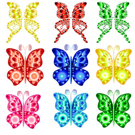 Set of the beautiful colorful butterflies  Illustration