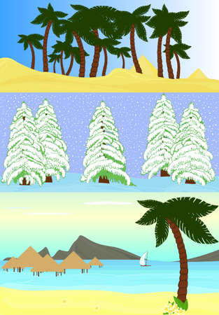 Summer and winter different landscapes  oasis in desert, snowy fir-trees and tropical seaside  Vector