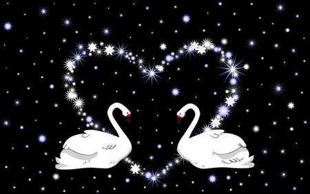 swans: Wedding vector background with white swans and heart Illustration