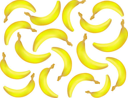 primate biology: Vector food and drink seamless pattern with realistic bananas