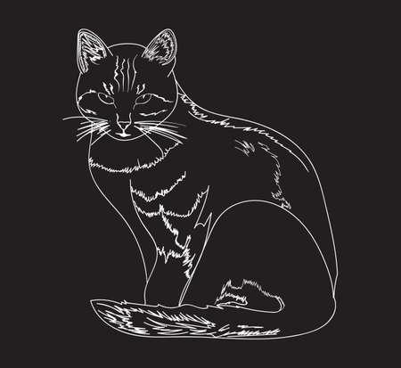 animalistic: Graphic handwritten cat. Vector Illustration