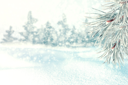 Winter background of snow and frost with free space for your decoration. 版權商用圖片