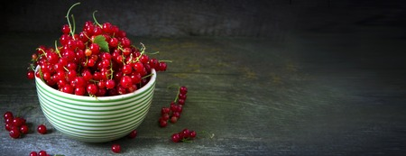 Redcurrant on a branch crop in a striped plate on wooden background. Copy space. Banner. 版權商用圖片